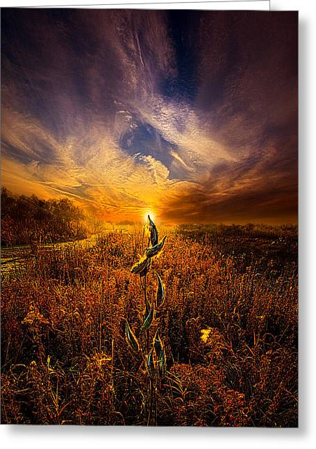 Geographic Greeting Cards - Can I Stay With You Awhile Greeting Card by Phil Koch