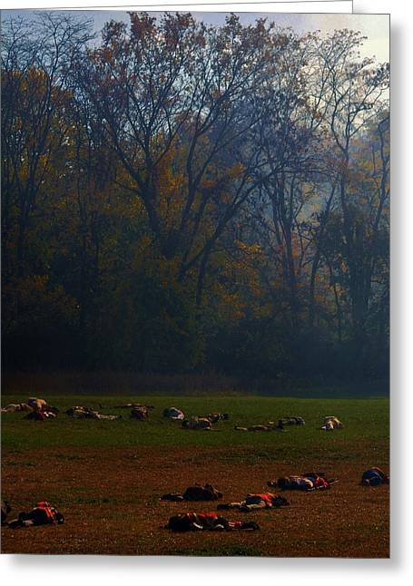 Reenact Greeting Cards - Can you find the survivor  Greeting Card by Michelle McPhillips