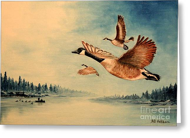 Snow Geese In Flight Greeting Cards - Canada Geese Greeting Card by Bill Holkham