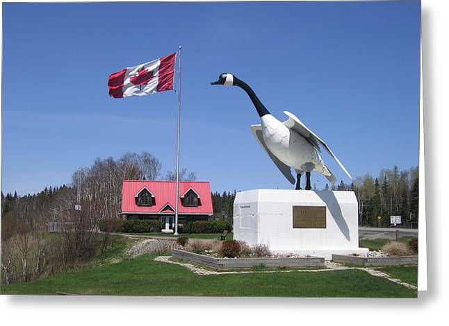Installation Art Greeting Cards - Canada Goose Greeting Card by Betty-Anne McDonald