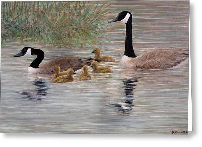 Canada Goose Family Greeting Card by Kathleen McDermott