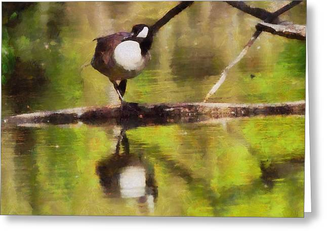 Calm Waters Mixed Media Greeting Cards - Canada Goose Reflection Greeting Card by Dan Sproul