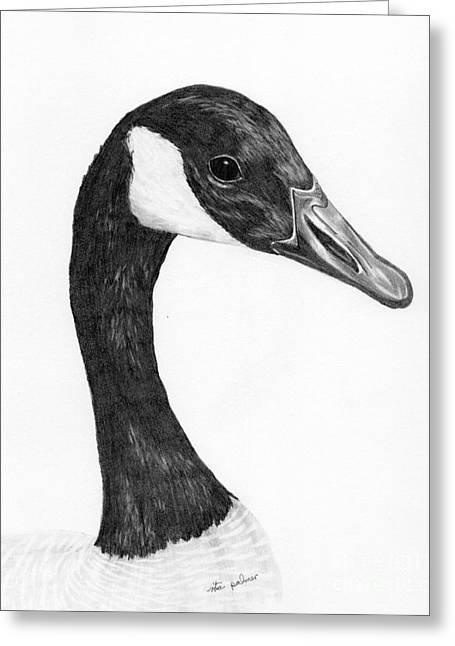 Geese Drawings Greeting Cards - Canada Goose Greeting Card by Rita Palmer