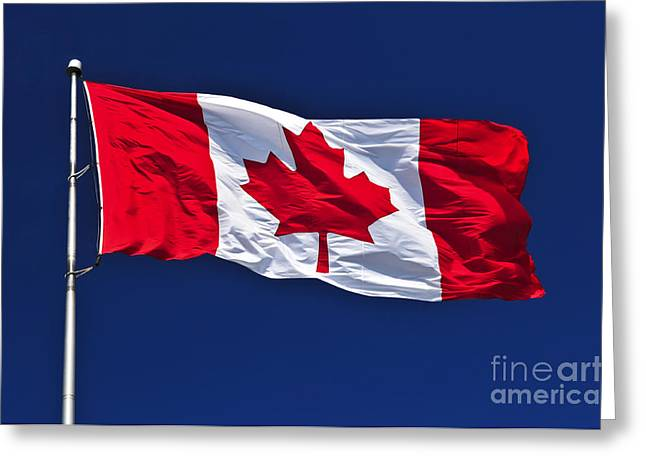 Flag Background Greeting Cards - Canadian flag Greeting Card by Elena Elisseeva