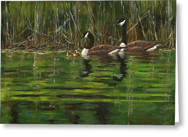 Baby Mallards Paintings Greeting Cards - Canadian Geese Greeting Card by Grant Lounsbury