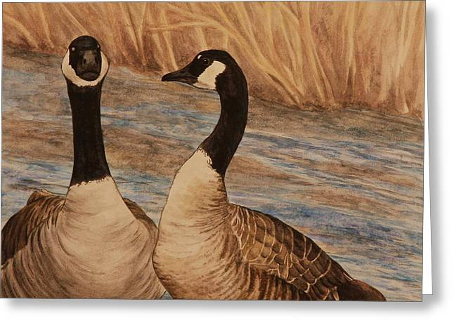 Canadian Geese Greeting Card by Michelle Miron-Rebbe