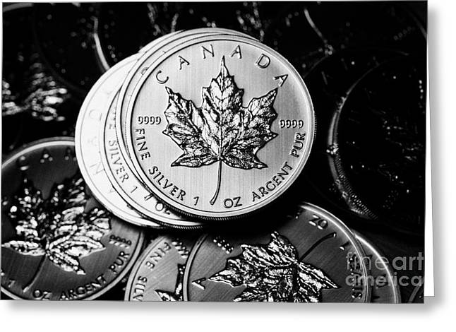 Silver Coins Greeting Cards - Canadian One Ounce Maple Leaf Silver Coins Greeting Card by Joe Fox