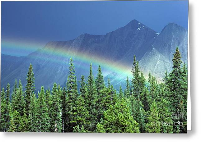 Canadian Photographer Greeting Cards - Canadian Rockies 3 Greeting Card by Bob Christopher