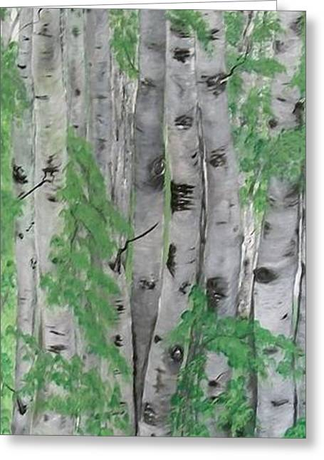 Landscape Posters Greeting Cards - Canadian White  Poplar Greeting Card by Sharon Duguay