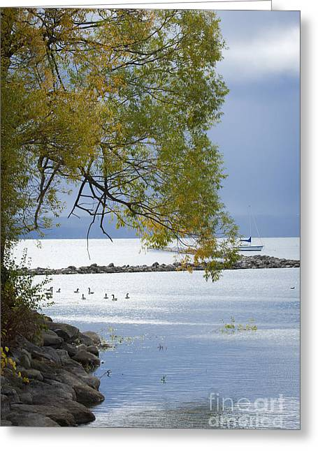 Canandaigua Lake Greeting Cards - Canandaigua Lake Outlet Greeting Card by Roger Bailey