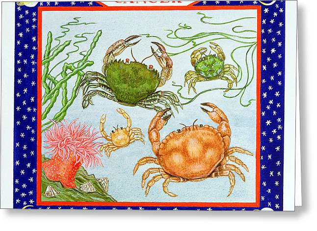 July Greeting Cards - Cancer Wc On Paper Greeting Card by Catherine Bradbury