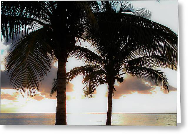 Cancun Greeting Cards - Cancun Mexico Greeting Card by Bill Cannon