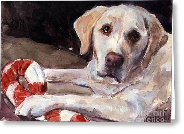 Yellow Lab Greeting Cards - Candy Cane Greeting Card by Molly Poole