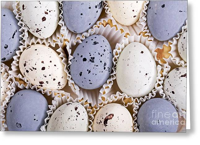 Shell Texture Greeting Cards - Candy eggs Greeting Card by Jane Rix