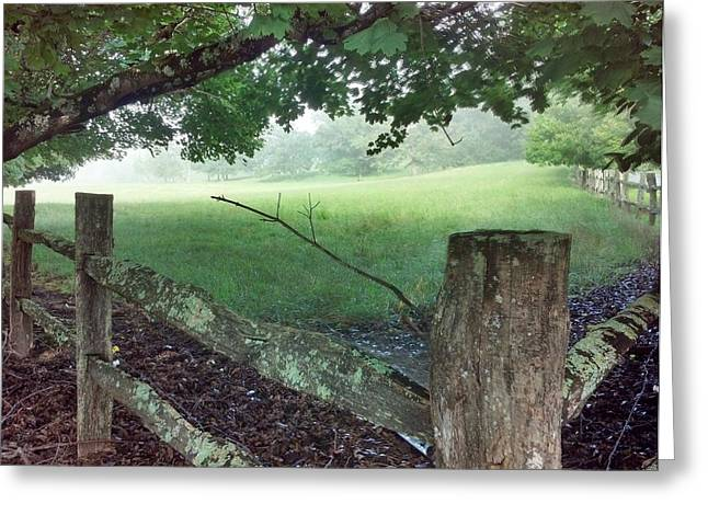 Cane Creek Greeting Cards - Cane Creek Fencepost Greeting Card by Dave Sieg