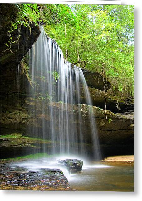Alabama Pyrography Greeting Cards - Caney Creek Falls Greeting Card by Scott Moore
