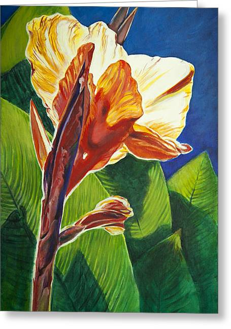 Canna Lilly Sunrise Greeting Card by Kent Looft