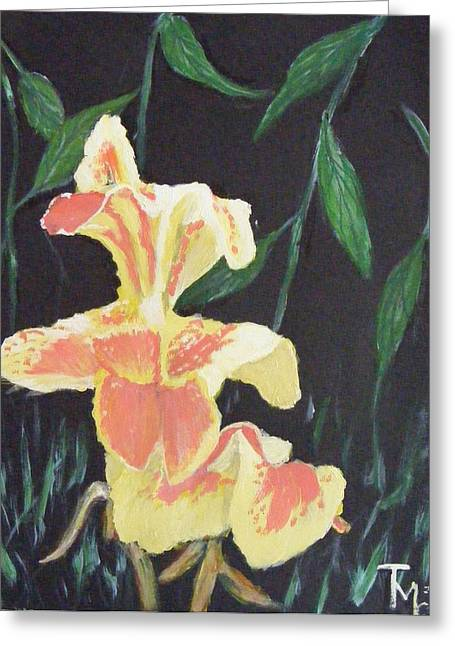 Canna Greeting Cards - Canna Lillium from Estufa Fria Greeting Card by Thomas McCaskie