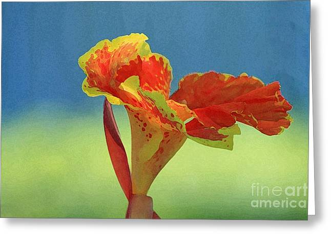 Canna Digital Art Greeting Cards - Canna Lily Greeting Card by Karen Adams