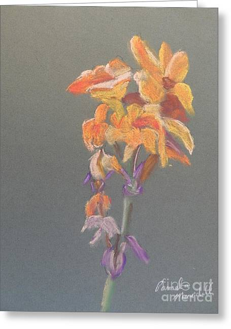 Canna Greeting Card by Pamela  Meredith
