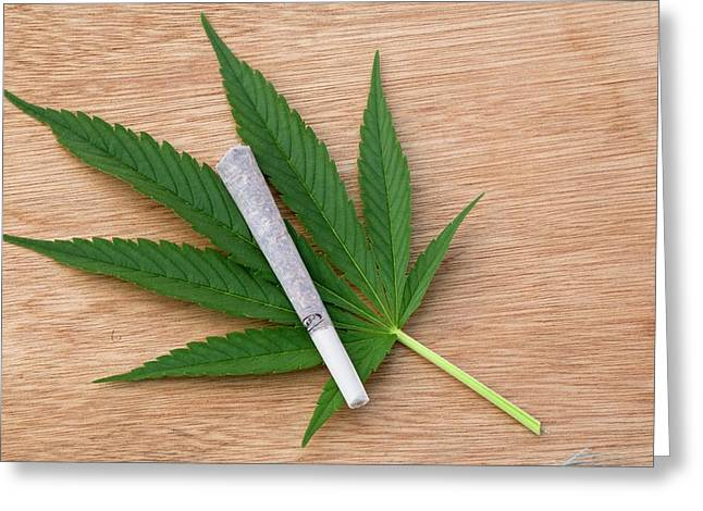 Cannabis Cigarette And Leaf Greeting Card by Adam Hart-davis