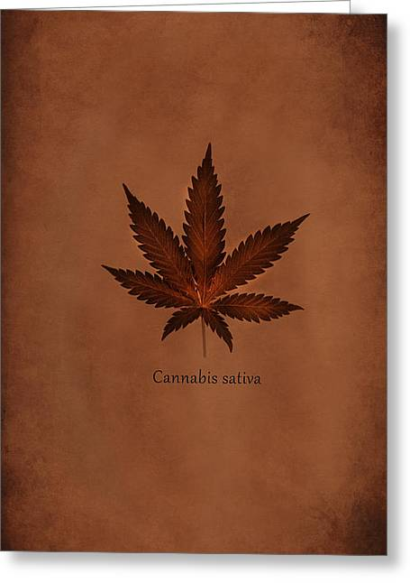 Samsung Greeting Cards - Cannabis Sativa Phone Case Greeting Card by Mark Rogan