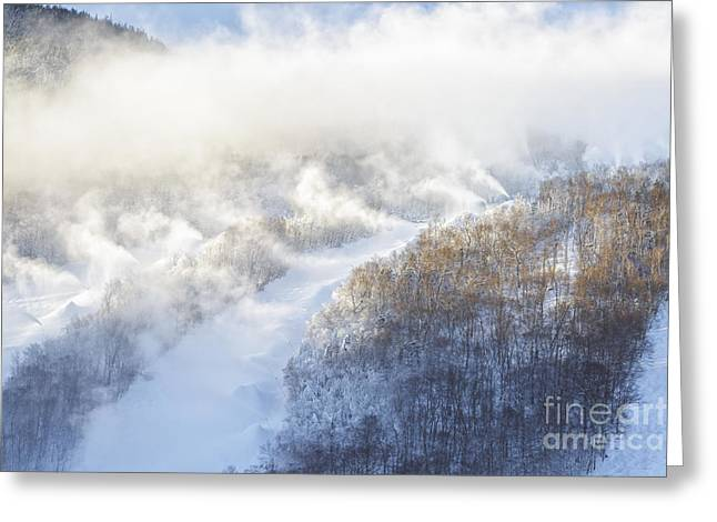 Blowing Snow Greeting Cards - Cannon Mountain Ski Area - Franconia Notch State Park New Hampshire Greeting Card by Erin Paul Donovan