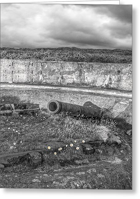 Artillery Gun Greeting Cards - Cannon Site in Black and White Greeting Card by Gill Billington