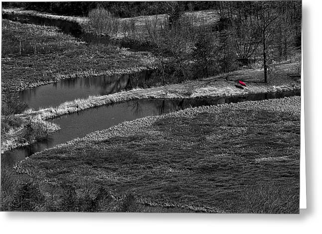 Canoe Greeting Cards - Canoe by Creek II Greeting Card by Steven Ralser