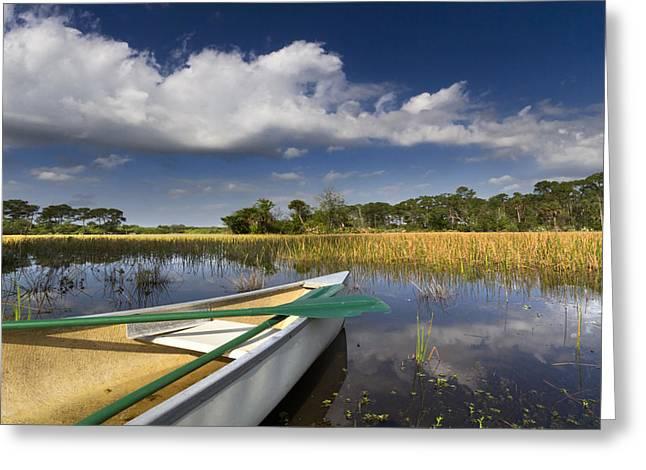 Coastal Preserve Greeting Cards - Canoeing in the Everglades Greeting Card by Debra and Dave Vanderlaan