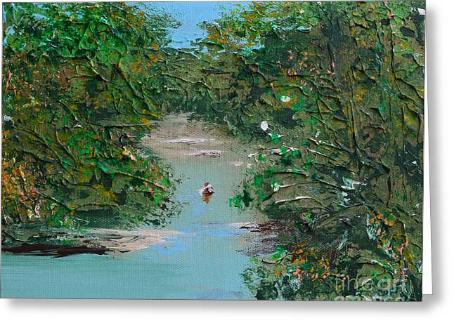 Indiana Rivers Paintings Greeting Cards - Canoeing On The White River Greeting Card by Alys Caviness-Gober