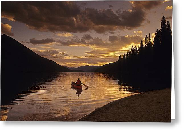 Canoeist Greeting Cards - Canoeist, Bowron Lake Park, British Greeting Card by Chris Harris