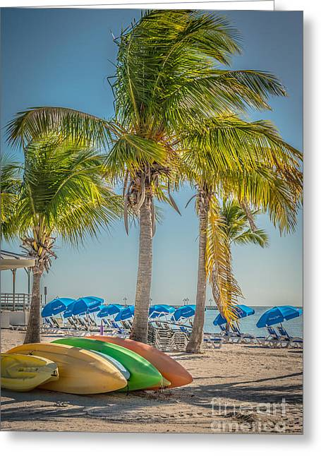 Canoes And Palms - Higgs Beach Key West - Hdr Style Greeting Card by Ian Monk