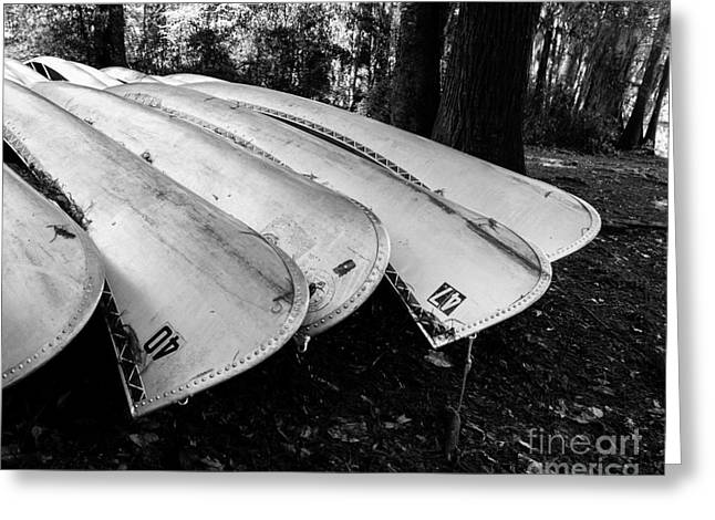 Summer Camps Greeting Cards - Canoes on Caddo in Black and White Greeting Card by Sonja Quintero