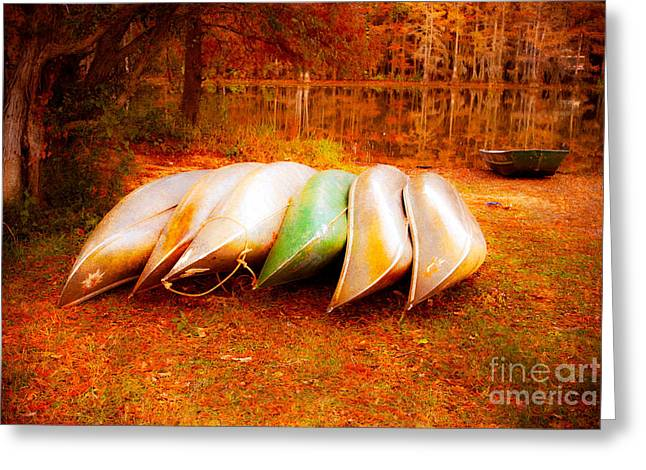 Canoe Photographs Greeting Cards - Canoes on Caddo Lake Greeting Card by Sonja Quintero