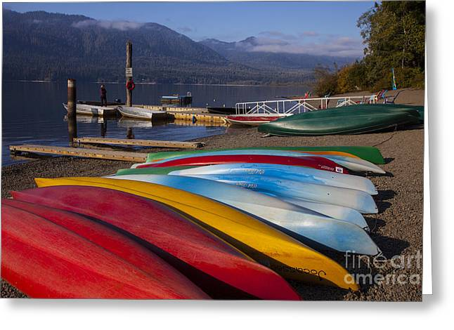 Canoe Photographs Greeting Cards - Canoes Greeting Card by Timothy Johnson