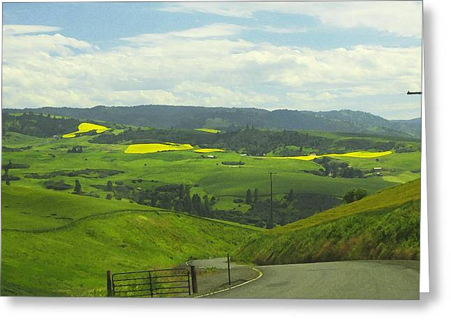 Canola Country Road Greeting Card by Anne Mott