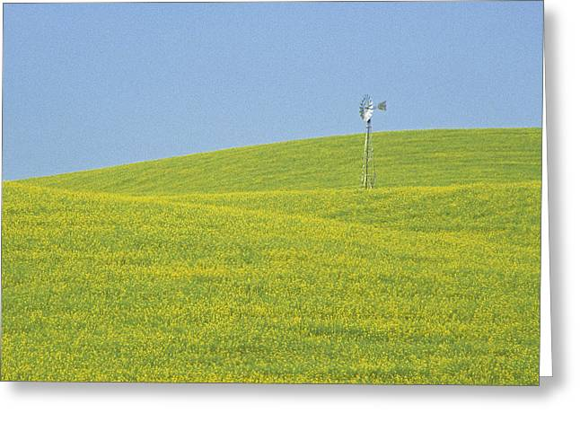 Idaho Scenery Greeting Cards - Canola Windmill Greeting Card by Latah Trail Foundation