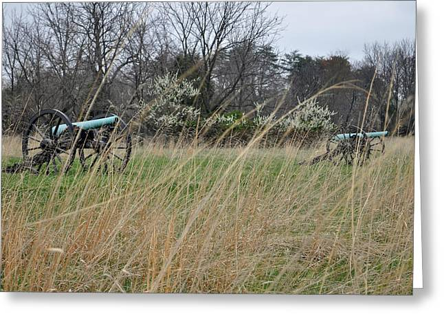 Stonewall Greeting Cards - Cannon in the Grasses of Manassas National Battlefield Park Greeting Card by Bruce Gourley