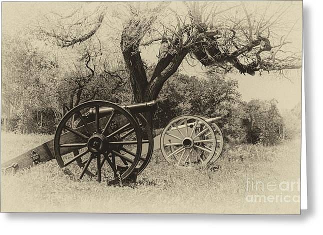 Goliad Texas Greeting Cards - Canons in the Field Greeting Card by John Kain