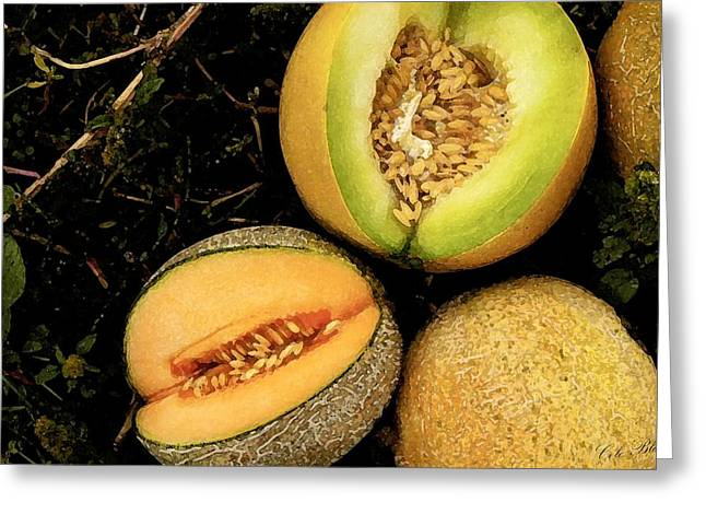 Melon Drawings Greeting Cards - Cantaloupe Greeting Card by Cole Black