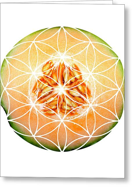 Sacred Geometry Greeting Cards - Cantelope Greeting Card by Sacred Geometry