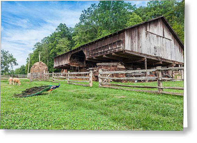 Cantilever Barn Greeting Cards - Cantilever Barn Greeting Card by Melinda Fawver