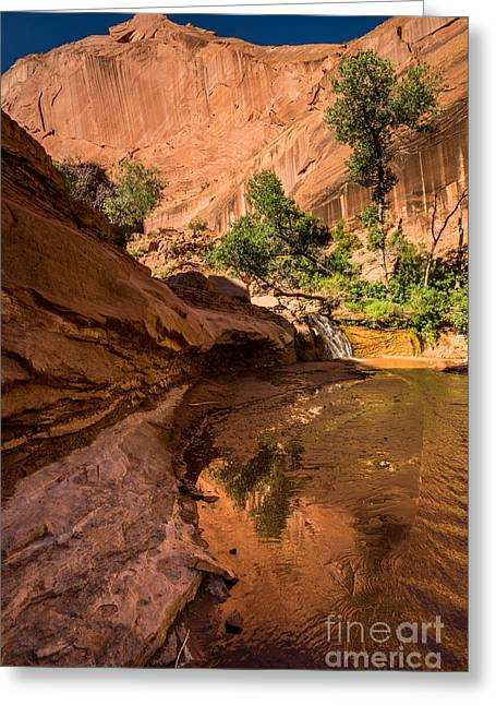 Canyon And Waterfall - Coyote Gulch - Utah Greeting Card by Gary Whitton