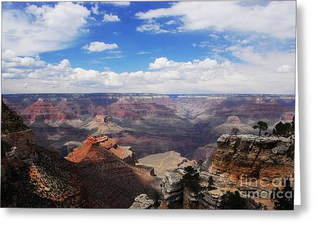White River Scene Greeting Cards - Canyon Colors 4 Greeting Card by Mel Steinhauer