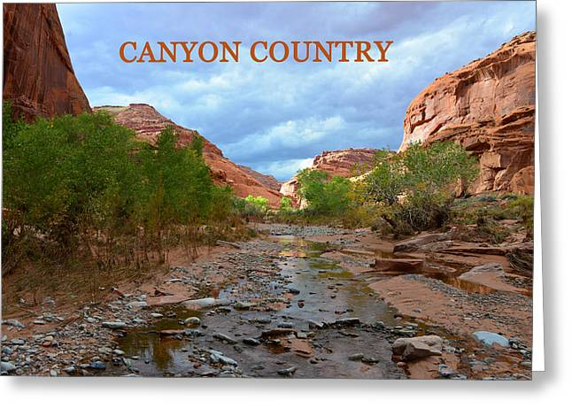 Canyon Country Greeting Cards - Canyon Country poster work A Greeting Card by David Lee Thompson