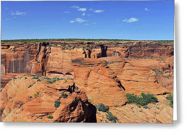 North Rim Greeting Cards - Canyon de Chelly from Sliding House Overlook Greeting Card by Christine Till