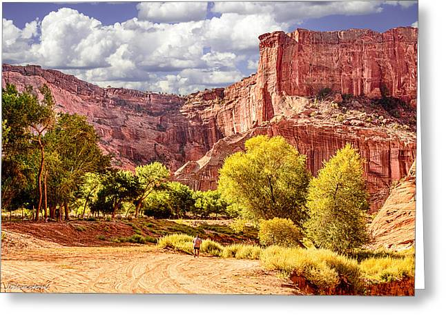 The Plateaus Digital Greeting Cards - Canyon De Chelly Navajo Tribal Park Greeting Card by  Bob and Nadine Johnston