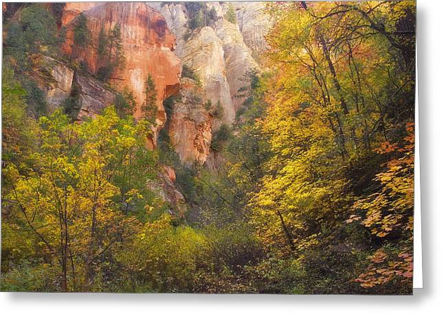 North Fork Greeting Cards - Canyon Kaleidoscope  Greeting Card by Peter Coskun