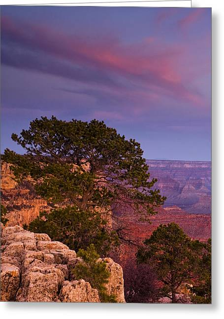Pink Pastels Greeting Cards - Canyon Morning Greeting Card by Andrew Soundarajan